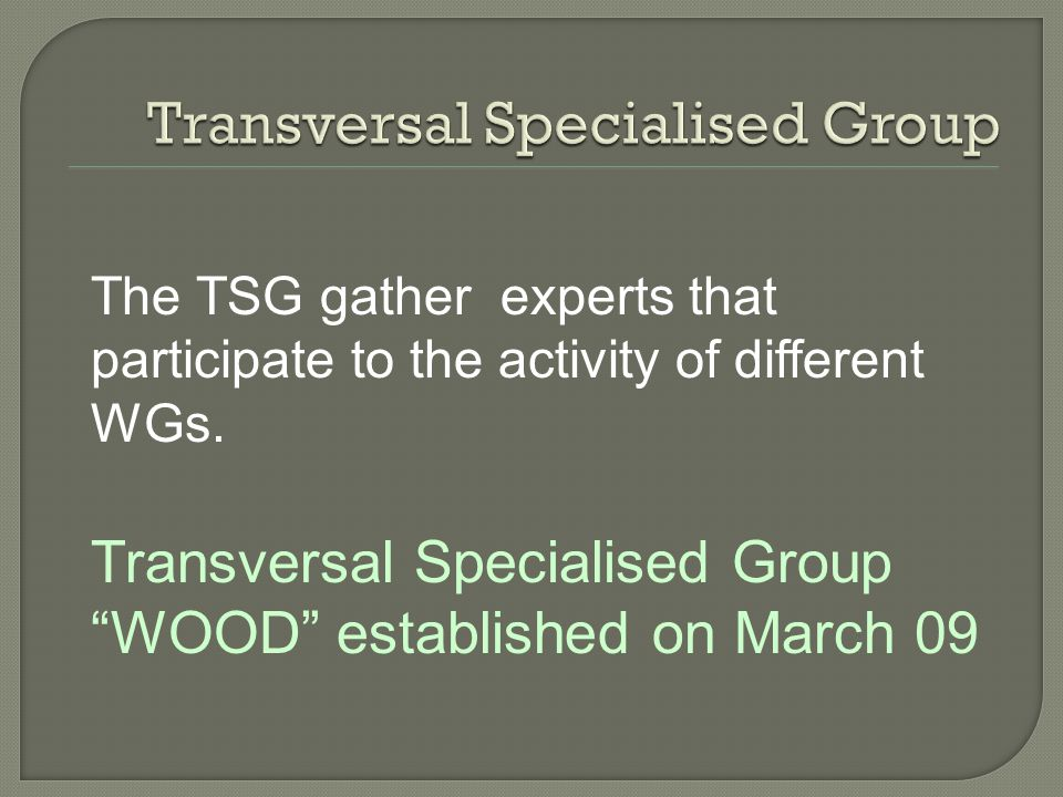 The TSG gather experts that participate to the activity of different WGs.
