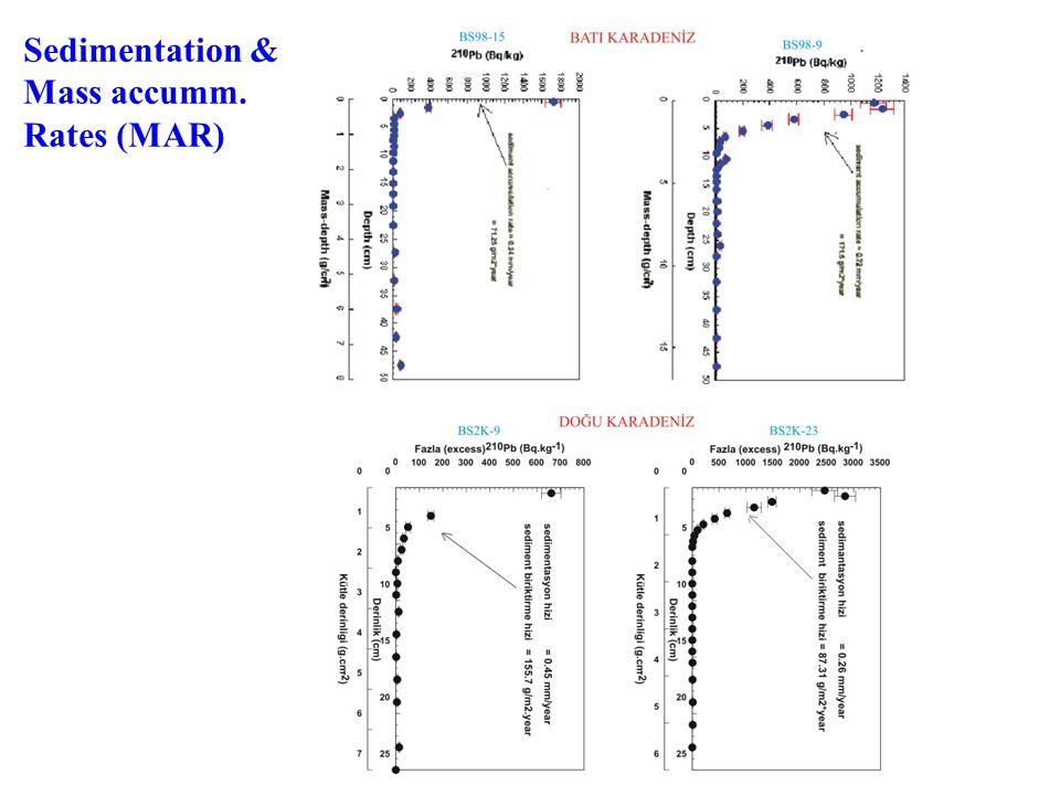 Sedimentation & Mass accumm. Rates (MAR)