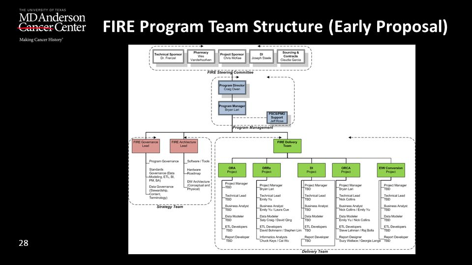 FIRE Program Team Structure (Early Proposal) 28