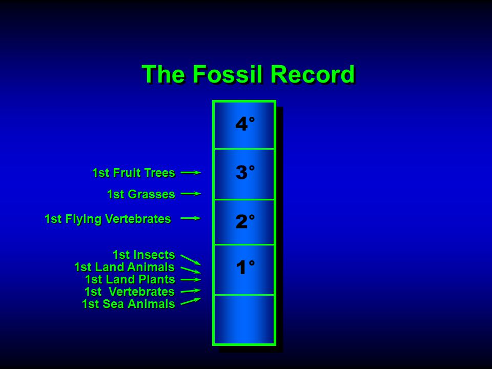 The Fossil Record A Record Of......Death (billions) …Extinction (>200,000) …Thorns …Carnivory 3° 1° 2° 4° …Disease …Suffering 1st Sea Animals 1st Vertebrates 1st Land Animals 1st Insects 1st Flying Vertebrates 1st Land Plants 1st Grasses 1st Fruit Trees