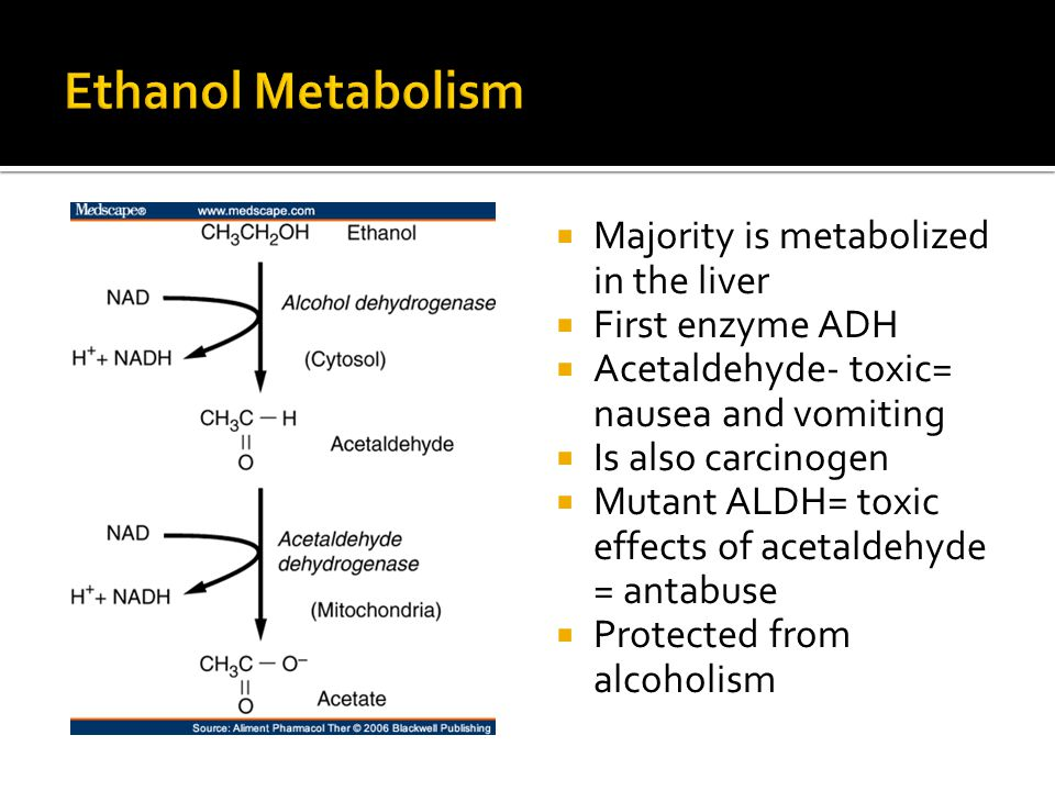 Majority is metabolized in the liver First enzyme ADH Acetaldehyde- toxic= nausea and vomiting Is also carcinogen Mutant ALDH= toxic effects of acetaldehyde = antabuse Protected from alcoholism