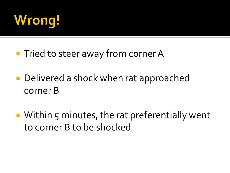 Tried to steer away from corner A Delivered a shock when rat approached corner B Within 5 minutes, the rat preferentially went to corner B to be shocked