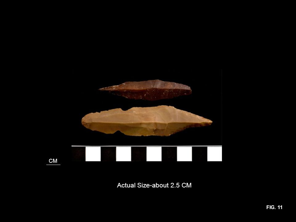 CM Actual Size-about 2.5 CM FIG. 11