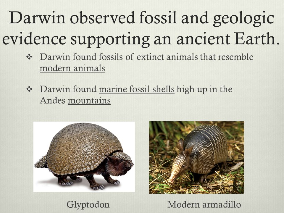Darwin observed fossil and geologic evidence supporting an ancient Earth.