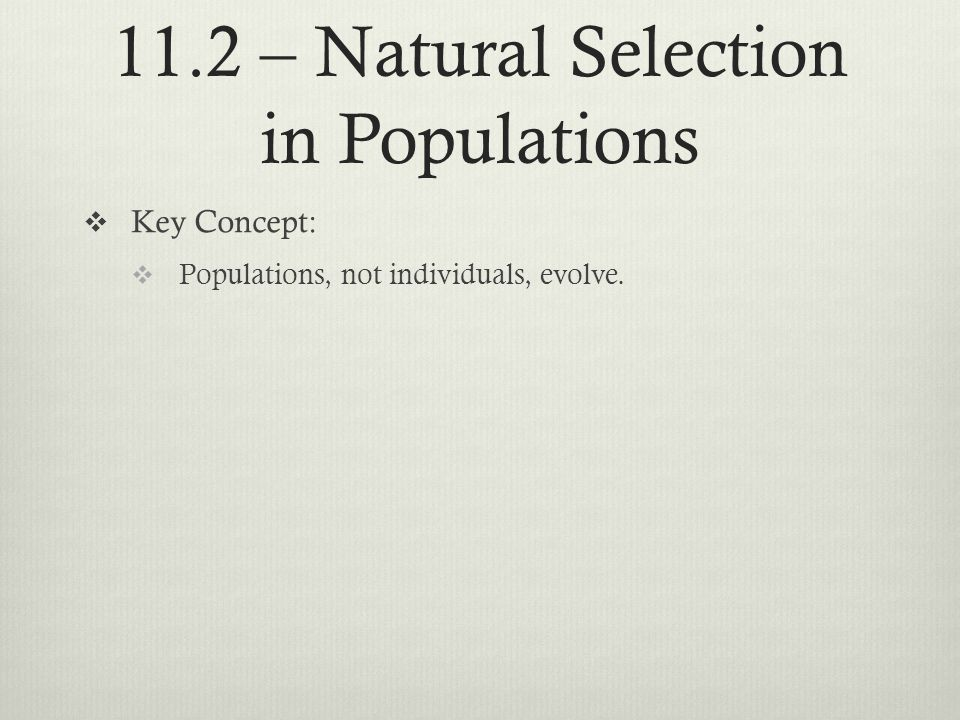 11.2 – Natural Selection in Populations Key Concept: Populations, not individuals, evolve.