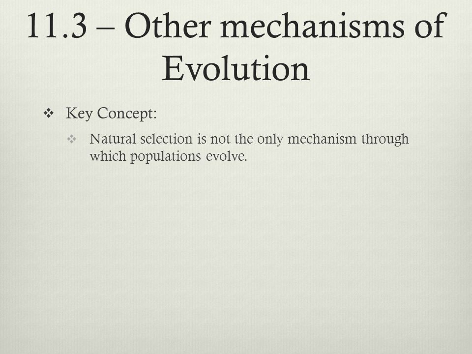 11.3 – Other mechanisms of Evolution Key Concept: Natural selection is not the only mechanism through which populations evolve.