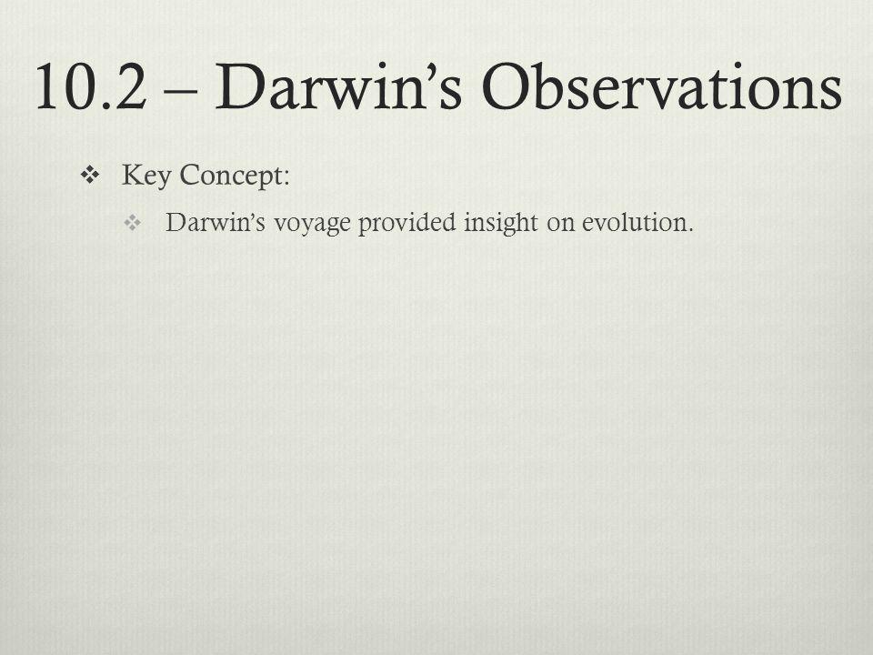10.2 – Darwins Observations Key Concept: Darwins voyage provided insight on evolution.
