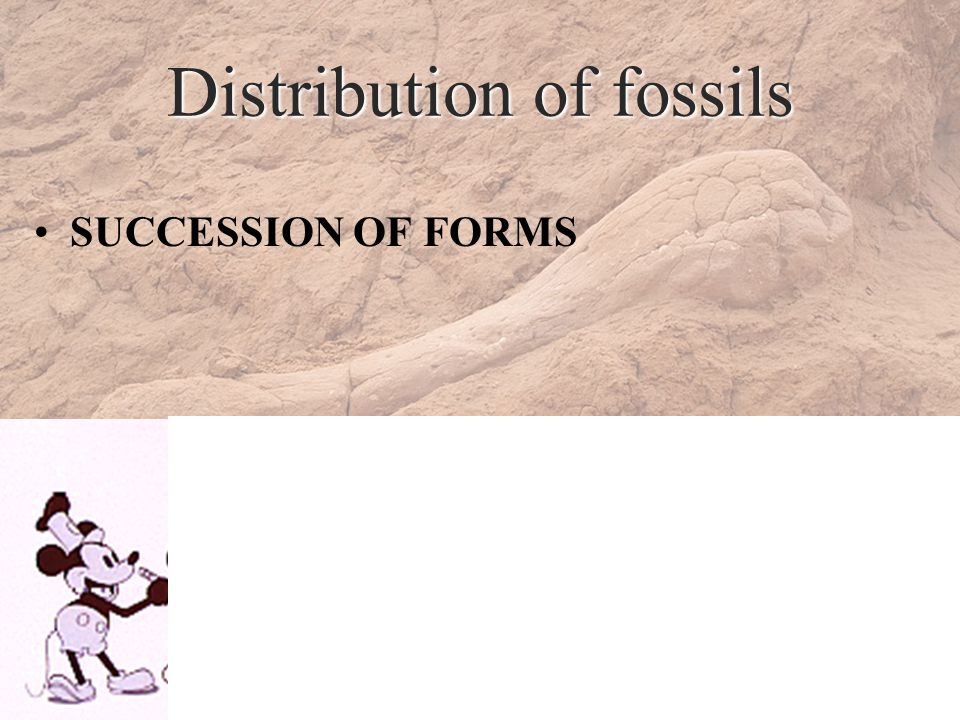 Distribution of fossils SUCCESSION OF FORMS