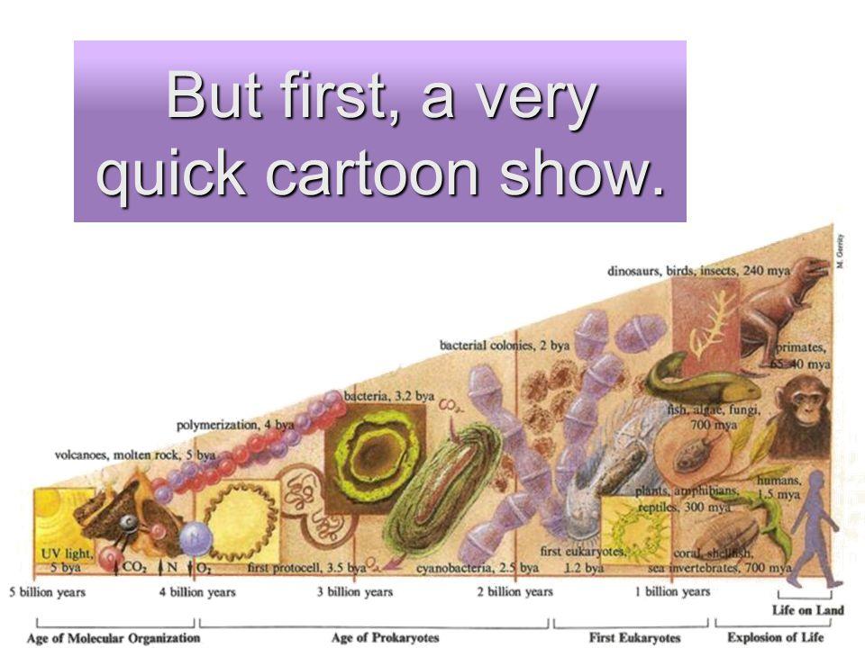 But first, a very quick cartoon show.