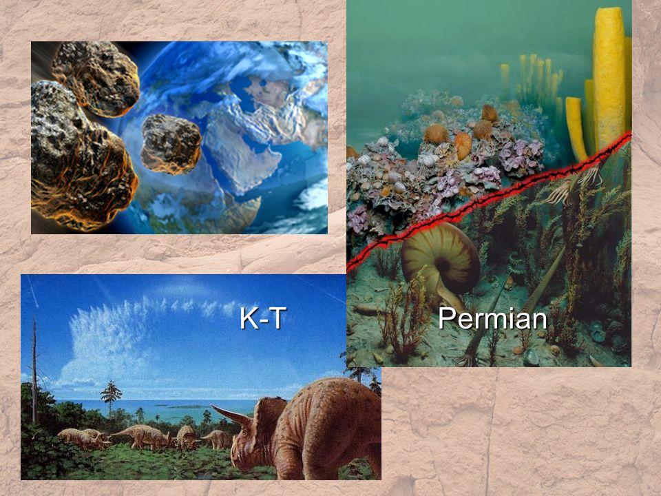 K-TPermian