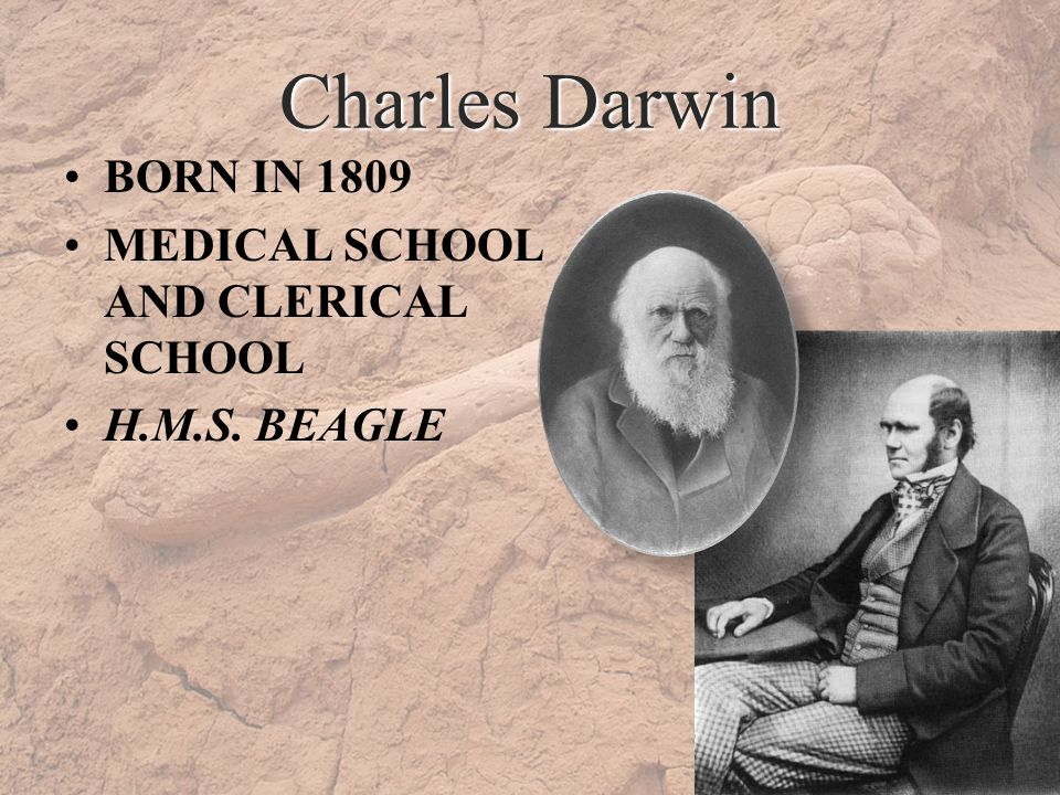 Charles Darwin BORN IN 1809 MEDICAL SCHOOL AND CLERICAL SCHOOL H.M.S. BEAGLE