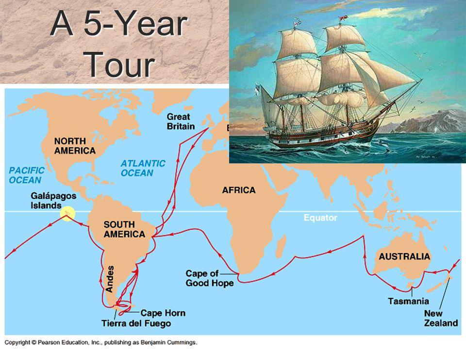 A 5-Year Tour