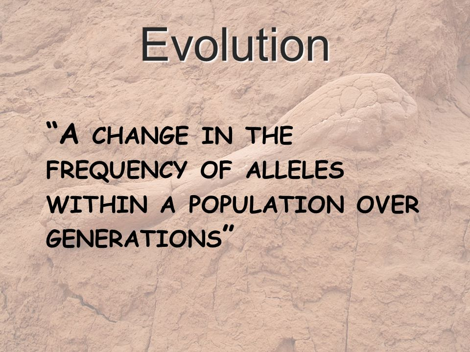 Evolution A CHANGE IN THE FREQUENCY OF ALLELES WITHIN A POPULATION OVER GENERATIONS