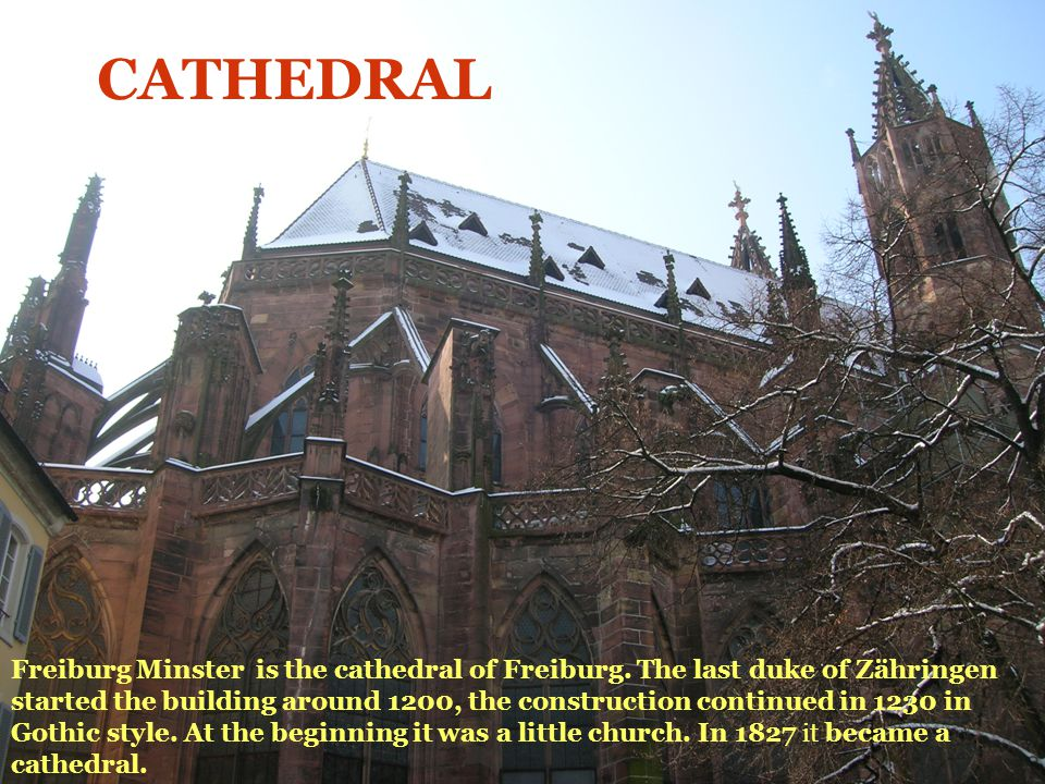 Freiburg Minster is the cathedral of Freiburg. The last duke of Zähringen started the building around 1200, the construction continued in 1230 in Goth