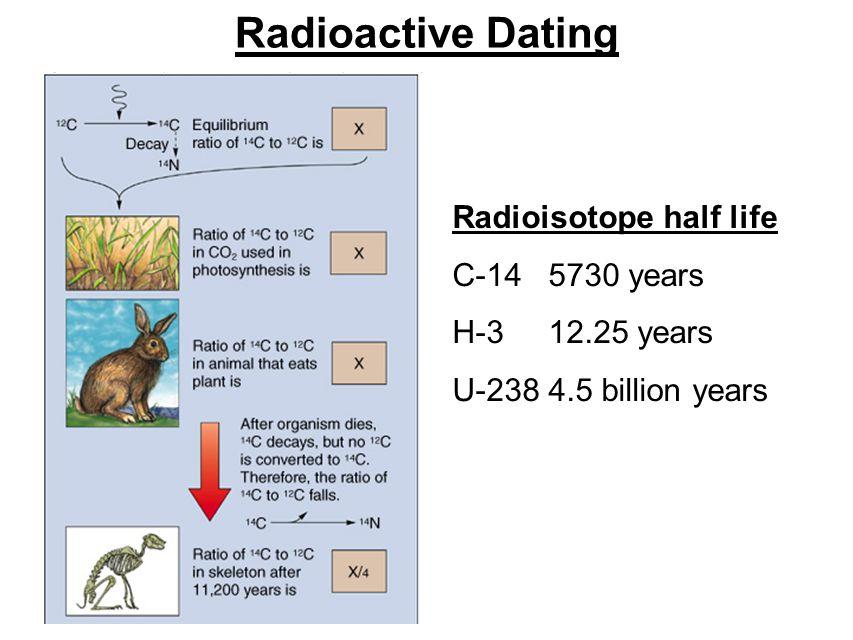 Radioactive Dating Radioisotope half life C-14 5730 years H-3 12.25 years U-2384.5 billion years