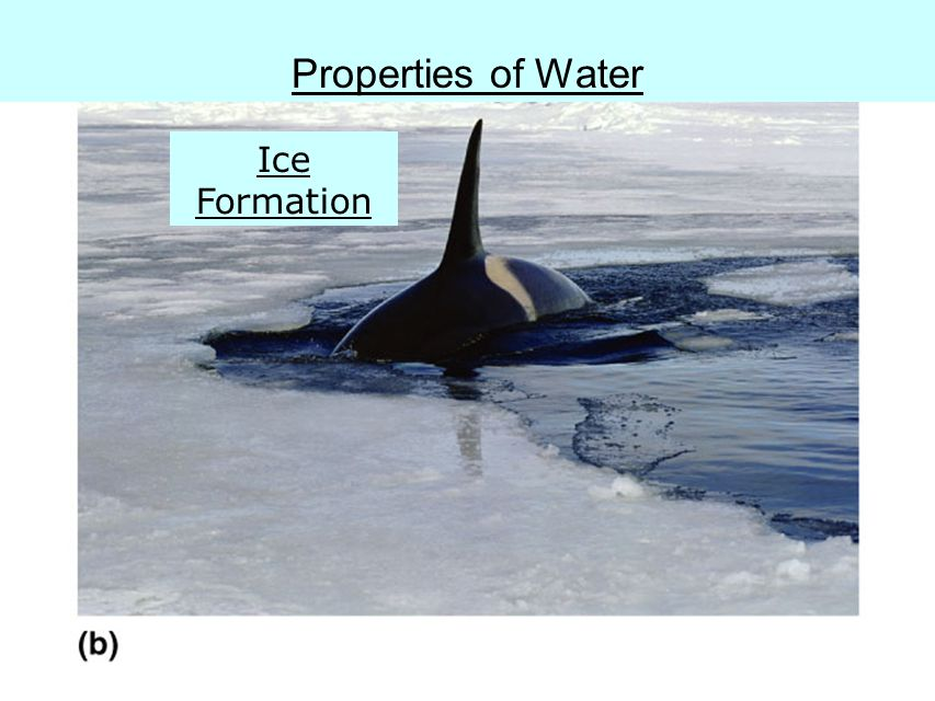 Fig. 2.11b Properties of Water Ice Formation