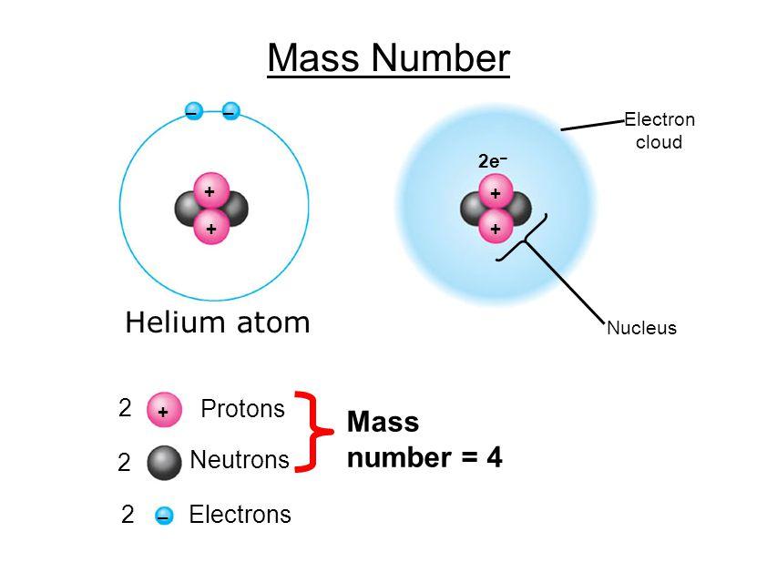 Mass Number + + –– + – 2 2 2 Protons Neutrons Electrons Mass number = 4 + + 2e – Electron cloud Nucleus Helium atom