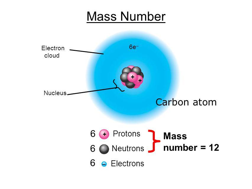 Mass Number + – 6 6 6 Protons Neutrons Electrons Mass number = 12 + + 6e – Nucleus Electron cloud Carbon atom