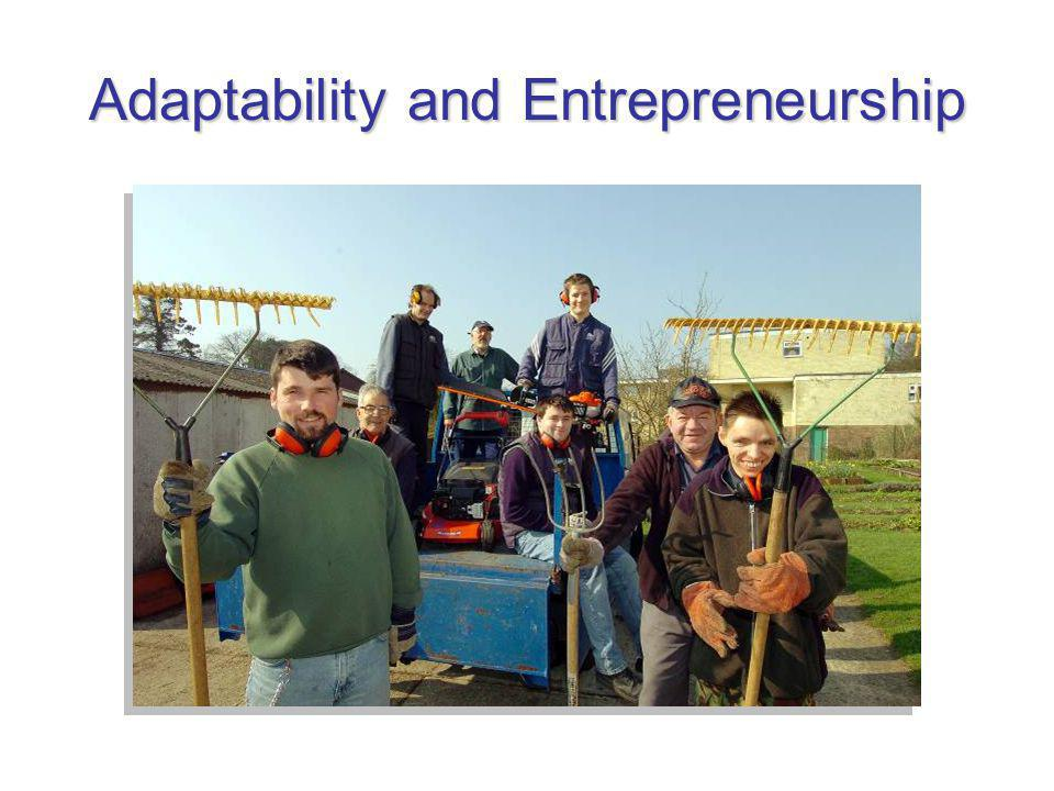 Adaptability and Entrepreneurship