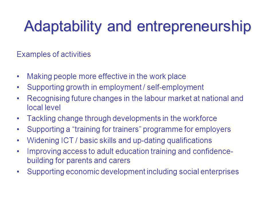 Adaptability and entrepreneurship Examples of activities Making people more effective in the work place Supporting growth in employment / self-employment Recognising future changes in the labour market at national and local level Tackling change through developments in the workforce Supporting a training for trainers programme for employers Widening ICT / basic skills and up-dating qualifications Improving access to adult education training and confidence- building for parents and carers Supporting economic development including social enterprises