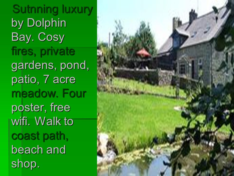 Sutnning luxury by Dolphin Bay.Cosy fires, private gardens, pond, patio, 7 acre meadow.