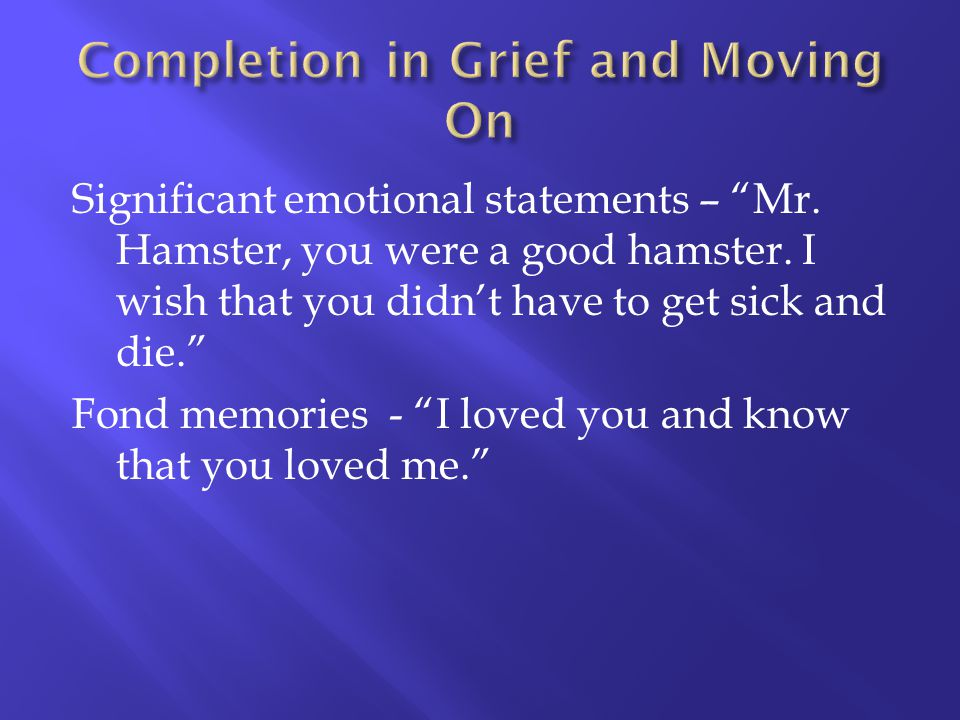 Significant emotional statements – Mr. Hamster, you were a good hamster. I wish that you didnt have to get sick and die. Fond memories - I loved you a