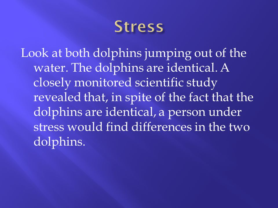 Look at both dolphins jumping out of the water. The dolphins are identical. A closely monitored scientific study revealed that, in spite of the fact t
