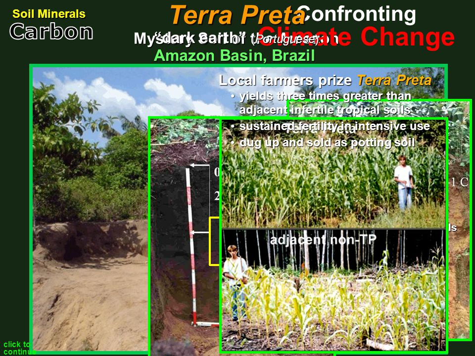 Mystery Soil of the Amazon Amazon Basin, Brazil Soil Minerals Climate Change ConfrontingOxisol predominant Amazon soils acidic notoriously infertile v