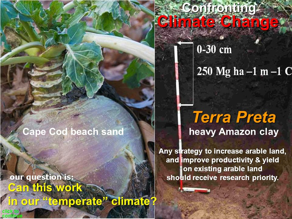 suck CO2 fixed into transform into boost soil fertility photosynthesis restore Soil Biology grow more pyrolysis inoculate out of Earths atmosphere Carbohydrates plant biomass Biochar sequestered carbon positivefeedbackloop Can this work in our temperate zone.