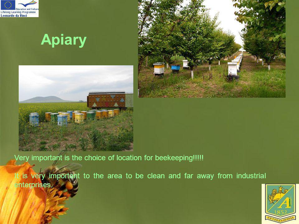 Page 30 Apiary Very important is the choice of location for beekeeping!!!!! It is very important to the area to be clean and far away from industrial