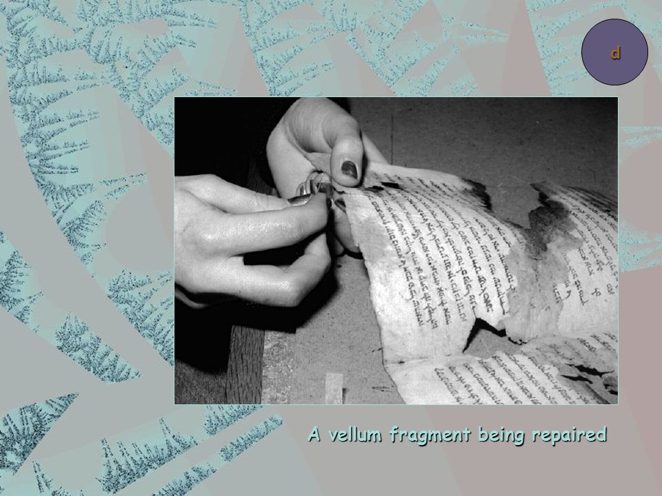 A vellum fragment being repaired d