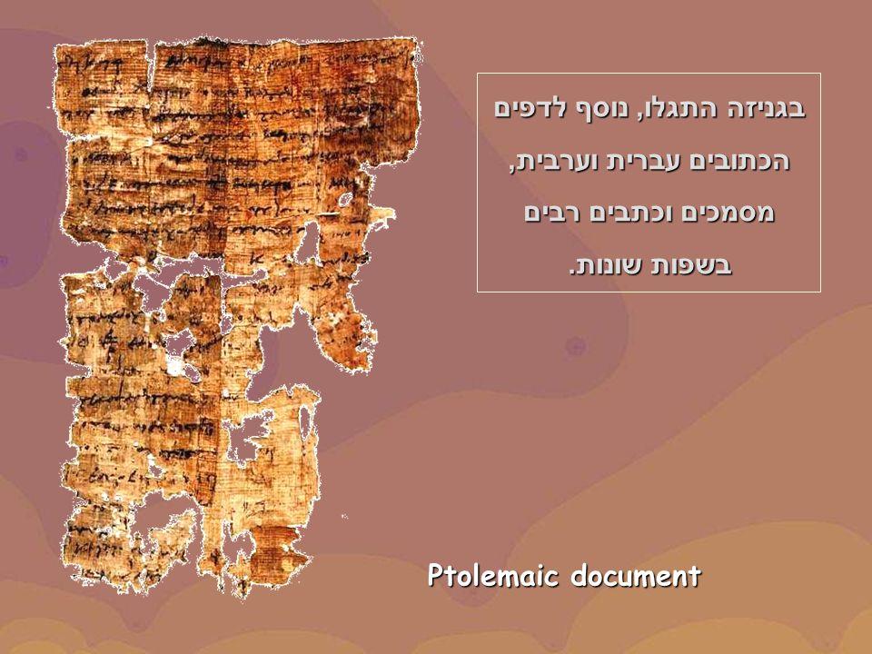 Ptolemaic document בגניזה התגלו, נוסף לדפים הכתובים עברית וערבית, מסמכים וכתבים רבים בשפות שונות.