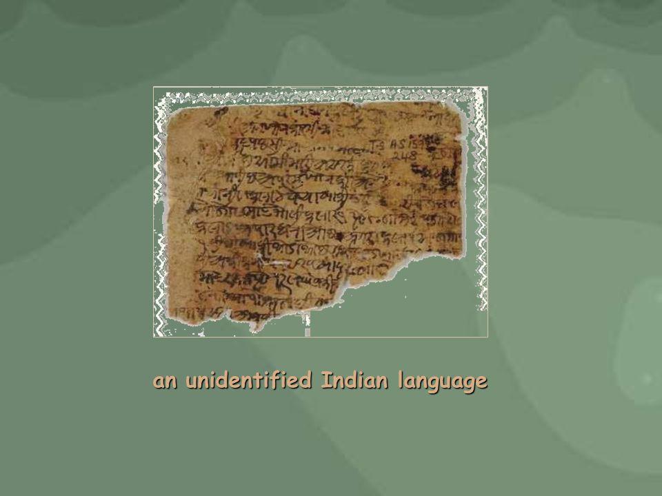an unidentified Indian language