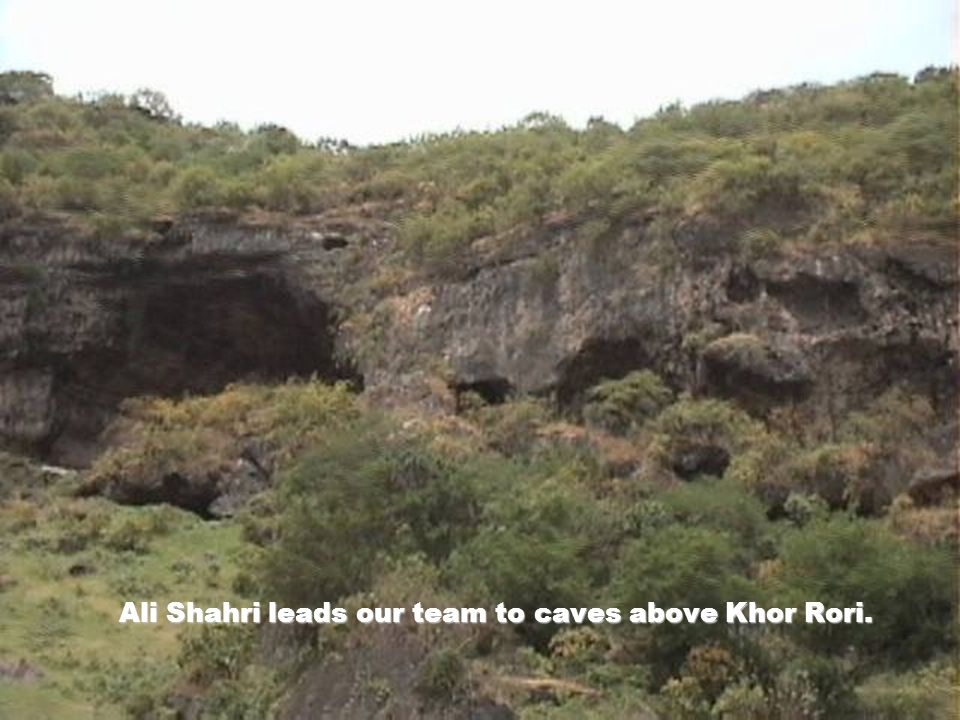 Ali Shahri leads our team to caves above Khor Rori.