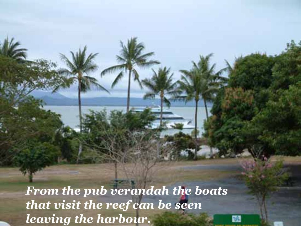 From the pub verandah the boats that visit the reef can be seen leaving the harbour.