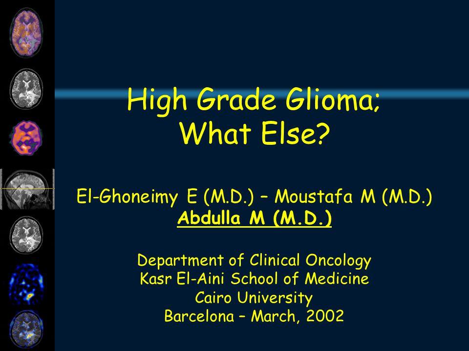 High Grade Glioma; What Else.