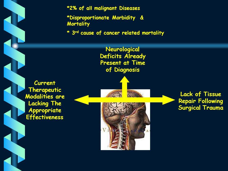 NEMROCK 1997- 1998 60 patients with high grade glioma Arm A 29 Pts CCNU/Platinum Radical Irradiation Arm B 31 Patients No Cth Radical Irradiation The Role of Neoadjuvant Cth