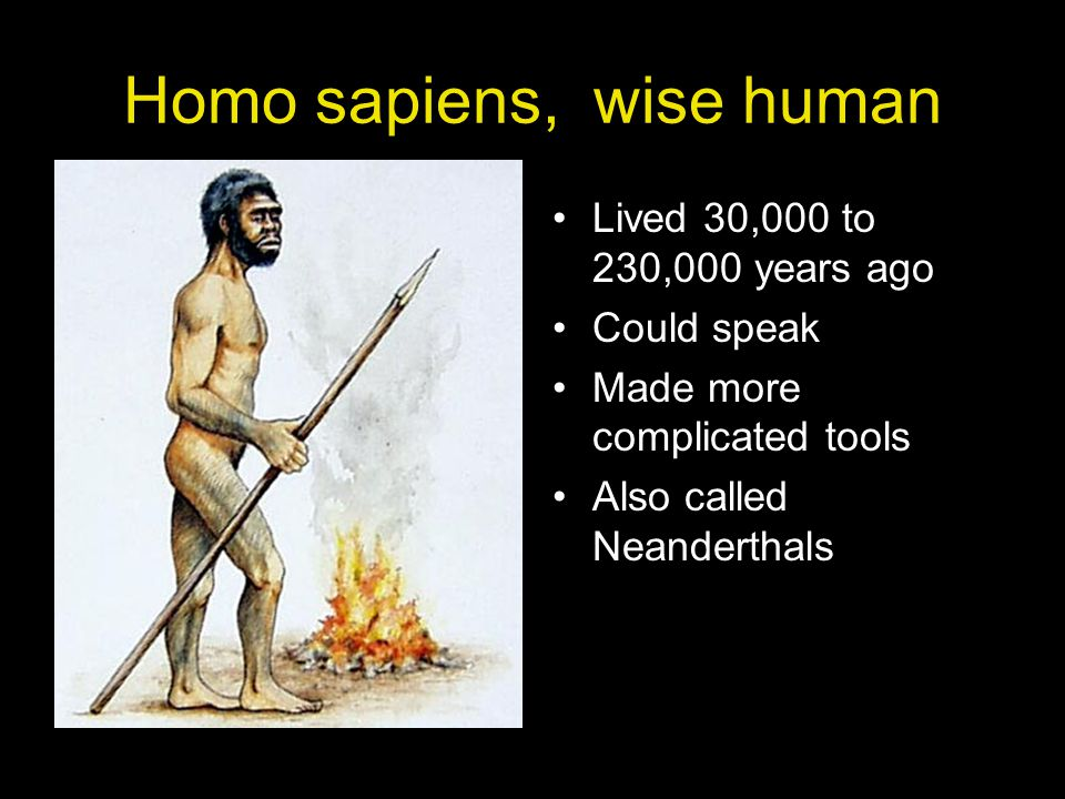 Homo sapiens sapiens, modern human Have been around for 120,000 years Became more advanced about 40,000 years ago This is what we call people today