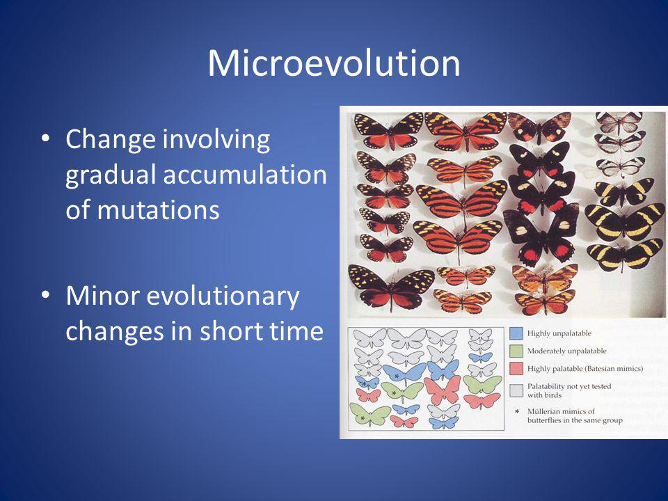 Microevolution Change involving gradual accumulation of mutations Minor evolutionary changes in short time