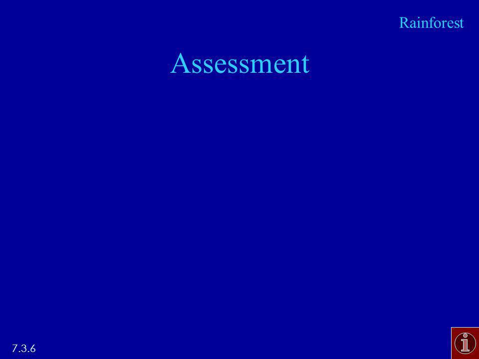 Assessment 7.3.6 Rainforest