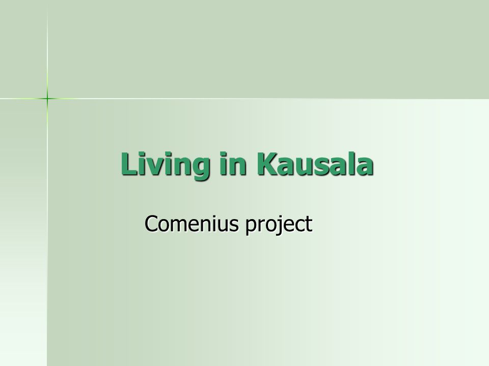 Living in Kausala Comenius project