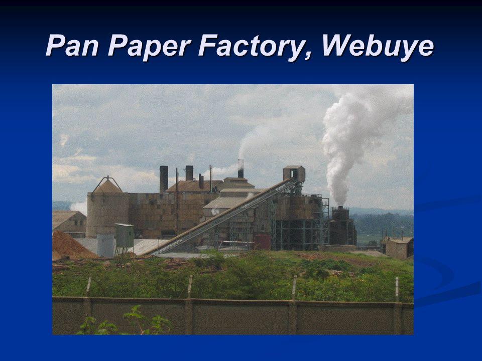 Pan Paper Factory, Webuye Pan Paper Factory, Webuye