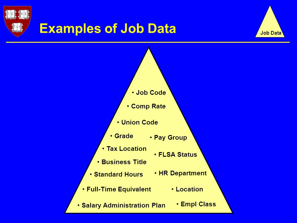 Examples of Job Data Job Code HR Department Location Empl Class Standard Hours Full-Time Equivalent FLSA Status Union Code Pay Group Tax Location Salary Administration Plan Grade Comp Rate Business Title Job Data