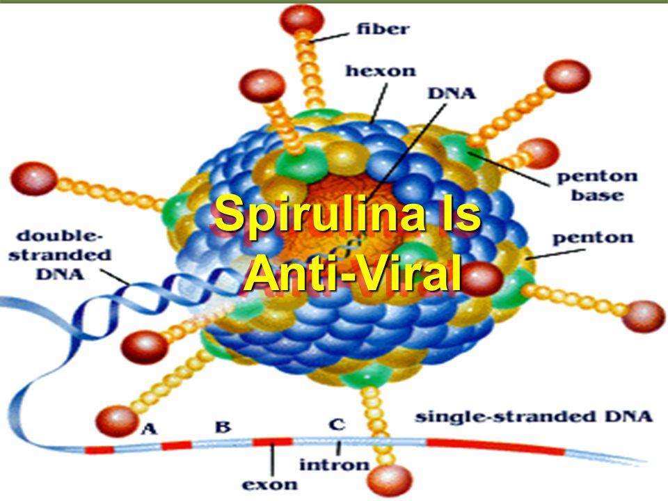 Spirulina Is Anti-Viral Anti-Viral Spirulina Is Anti-Viral Anti-Viral
