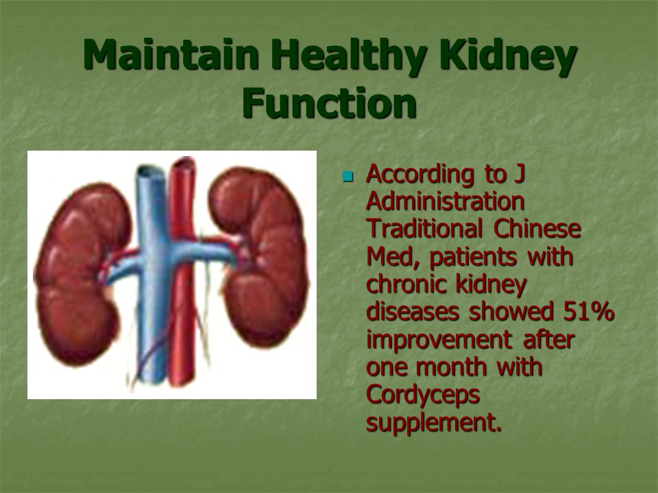 Maintain Healthy Kidney Function According to J Administration Traditional Chinese Med, patients with chronic kidney diseases showed 51% improvement after one month with Cordyceps supplement.