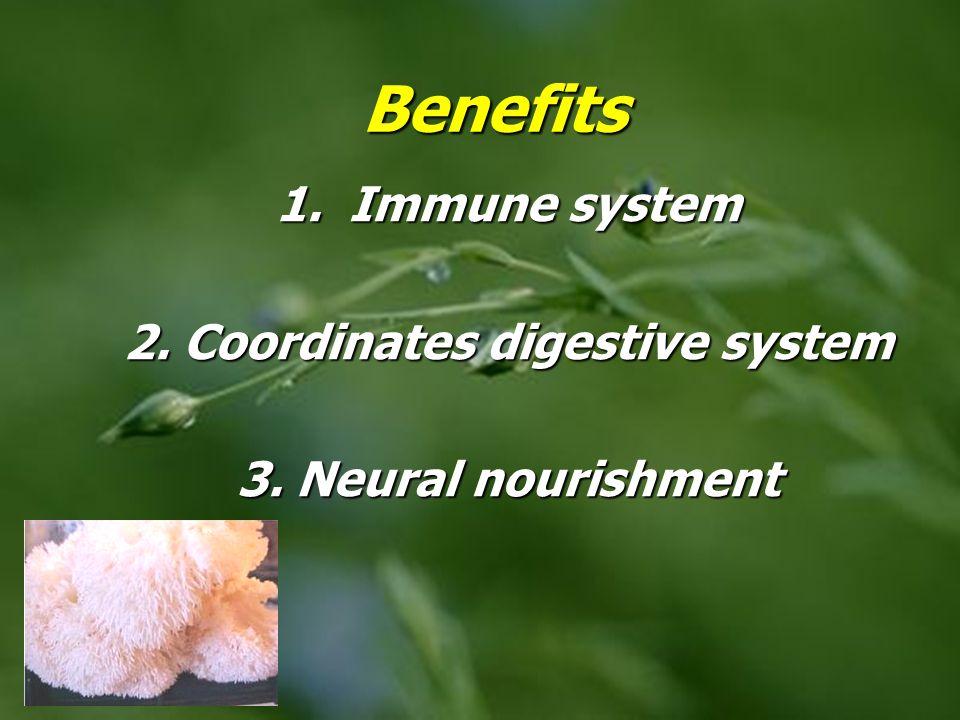 Benefits 1. Immune system 2. Coordinates digestive system 3. Neural nourishment