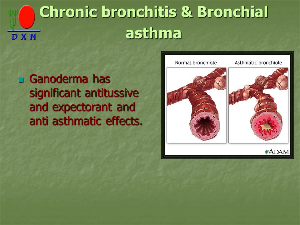 Chronic bronchitis & Bronchial asthma Ganoderma has significant antitussive and expectorant and anti asthmatic effects.