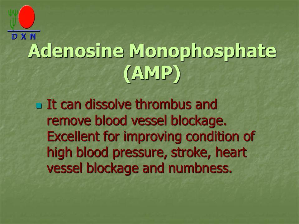 Adenosine Monophosphate (AMP) It can dissolve thrombus and remove blood vessel blockage.