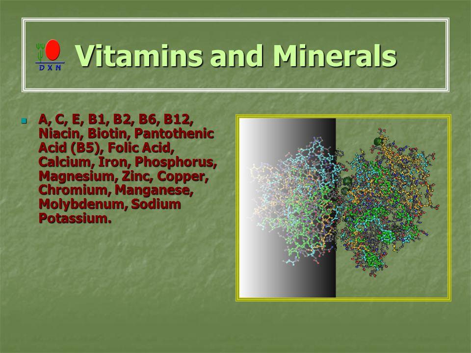 Vitamins and Minerals A, C, E, B1, B2, B6, B12, Niacin, Biotin, Pantothenic Acid (B5), Folic Acid, Calcium, Iron, Phosphorus, Magnesium, Zinc, Copper, Chromium, Manganese, Molybdenum, Sodium Potassium.