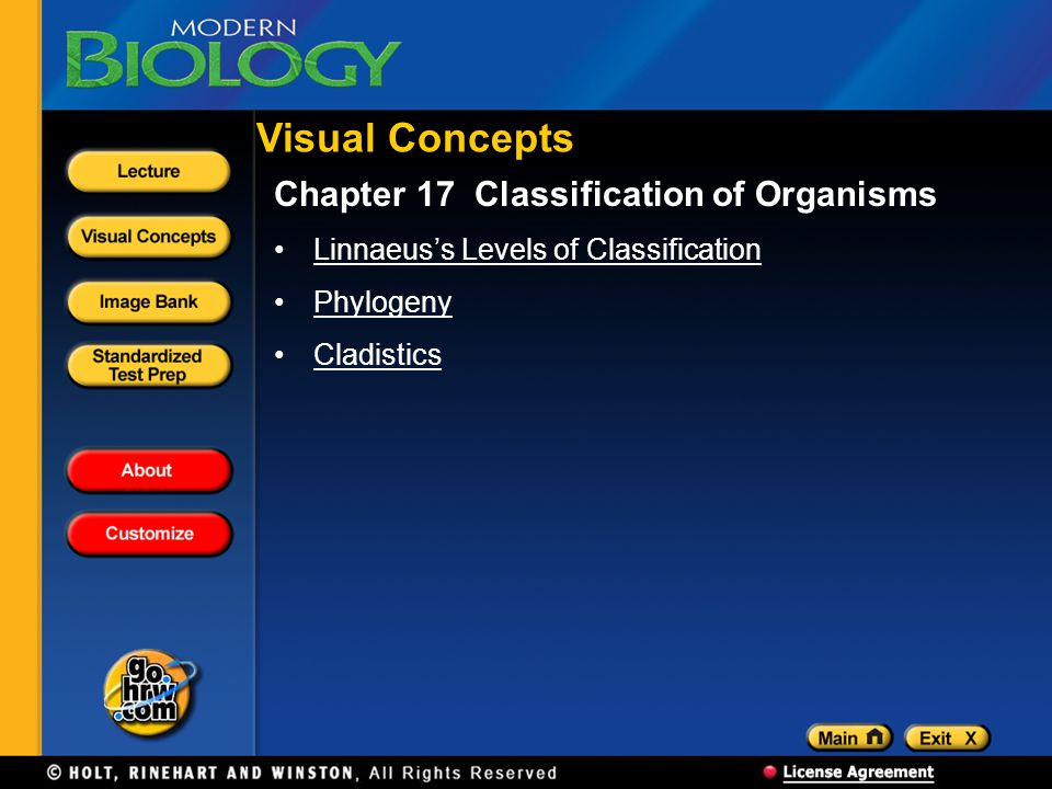 Visual Concepts Chapter 17 Classification of Organisms Linnaeuss Levels of Classification Phylogeny Cladistics